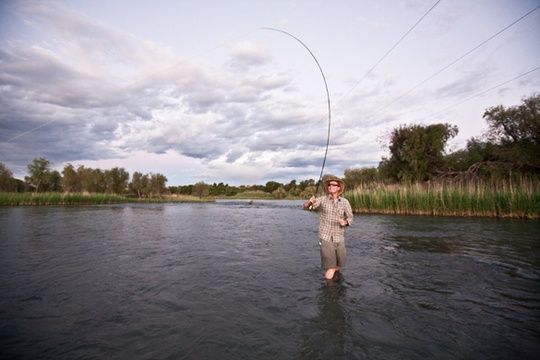 dry fly fly-fishing on the Orange River